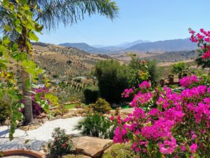 Gardens - Finca Gran Cerros