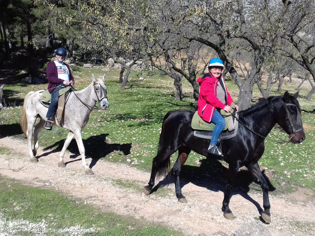 Finca Gran Cerros Rural Retreat Álora Horse riding
